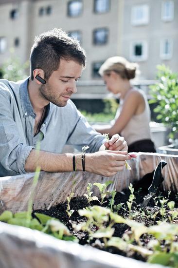 Jabra Bluetooth Headset CLASSIC, white - Hands-free - auch für Gartenarbeit
