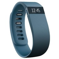 FitBit CHARGE Large, grau